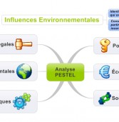 Analyse PESTEL en Mind Mapping