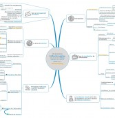 Le Mind Mapping et l'efficacité cognitive au service de l'Intelligence Collective
