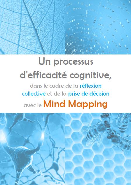 Mind Mapping efficacité cognitive