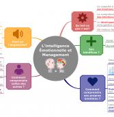 #MappingPro – L'intelligence Émotionnelle et Management