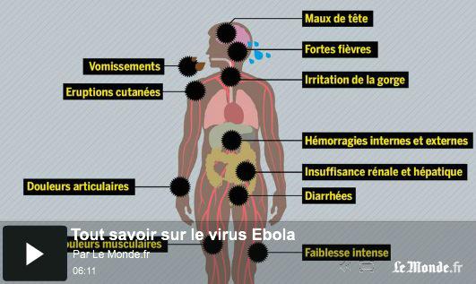 Infographie vidéo : Ebola, MSF dénonce une « coalition mondiale de l'inaction »