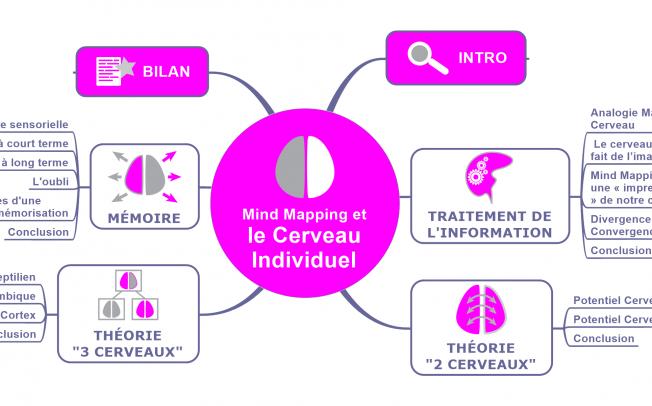 [e-Book] Notre cerveau et le Mind Mapping