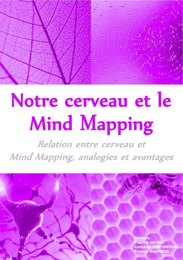 Ebook-Mind-mapping-et-cerveau-individuel