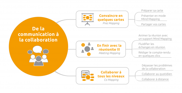Livre Managez avec le Mind Mapping - Communication Collaboration
