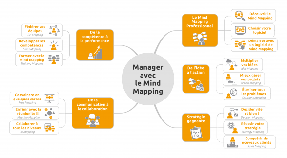 Map introduction livre Manager avec le Mind Mapping