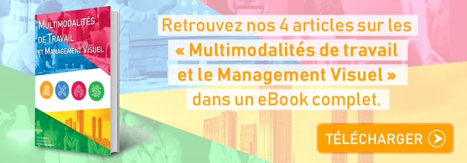 eBook Multimodalités de Travail et Management Visuel